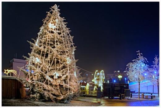 Ein Weihnachtsbaum für Bremerhaven