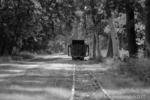 Moorbahn auf Gleis