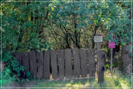 Niedersandhauser Moor